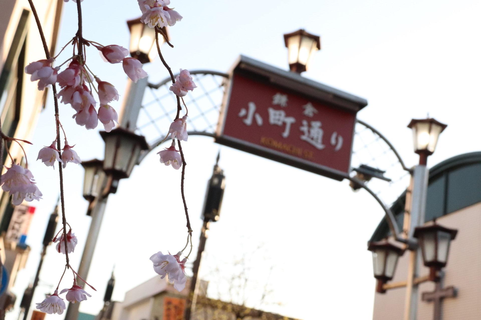 きっと満足!鎌倉小町通りのおすすめグルメ12選〓鎌倉グルメのリコメンド